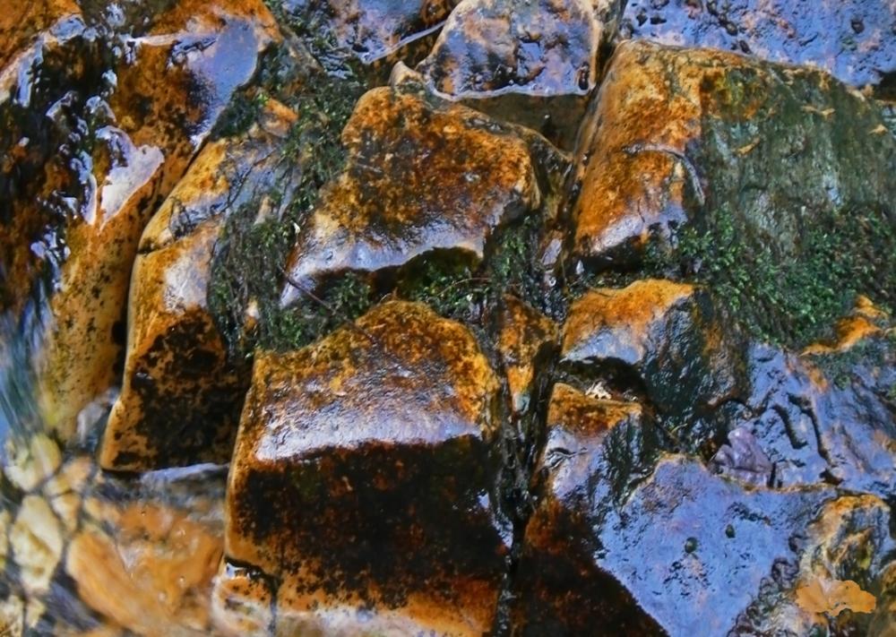 Agua, piedras y reflejos.(APR)  Parte I (1/6)