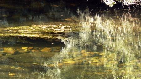 El agua muestra los elementos profundos.